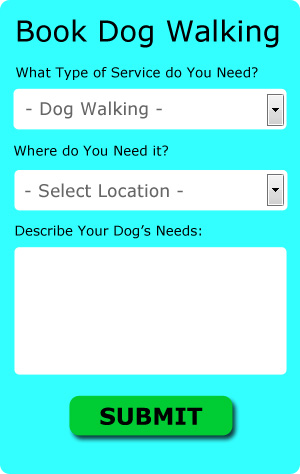 Free Stamford Dog Walker Quotes
