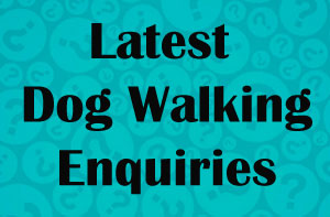 Hampshire Dog Walking Enquiries